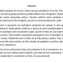 Slo-Amadeja